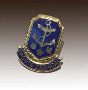 Hard enamel lapel pin with gold plating